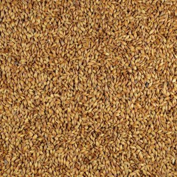 gladfield redback malt