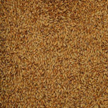 carahell weyermann malted barley