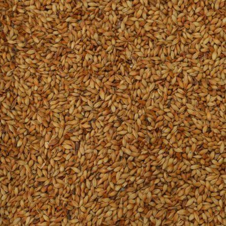 caramunich type 2 weyermann barley
