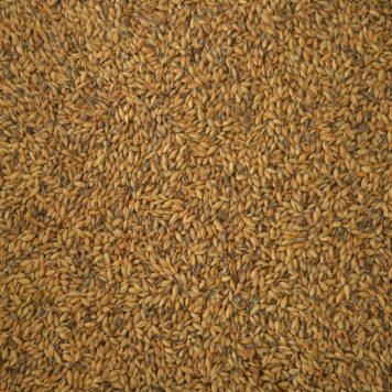 Bairds Brown malt